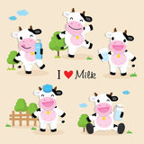 Cow Cute Character Cartoon Design Vector Royalty Free Stock Photos