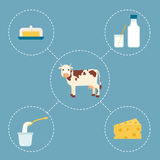 Cow and dairy products Stock Photos