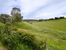 Cow Dale, Yorkshire England Stock Image