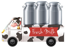 Cow delivering fresh milk Stock Images