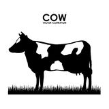 Cow design Stock Photos