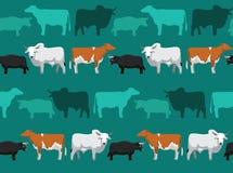 Cow Dexter Seamless Wallpaper Stock Images