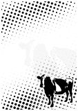 Cow dots poster background Royalty Free Stock Photo