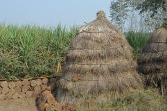 A cow dung cake hut Stock Photos