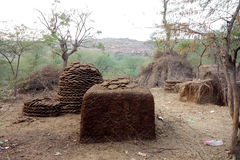 Cow Dung Fuel Storage. This image shows several cow dung fuel storages in various stages of the process. The dried paddies are stacked in an ascending ring Royalty Free Stock Image