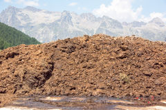 Cow dung on the swiss mountain background Royalty Free Stock Image