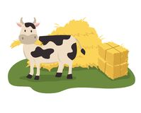 Cow eating hay. In front of hay bales illustration Royalty Free Illustration