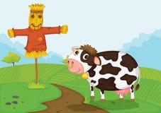 Cow at farm Stock Photos