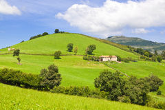 Cow farm in Cantabria, Spain. Typical cow farm rounded by pastures and forest. Spain stock photo