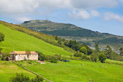 Cow farm in Cantabria, Spain. Typical cow farm rounded by pastures and forest. Spain royalty free stock image
