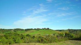 Cow Farm. Green grass pasturage, France. Cow Farm. Green grass pasturage, in France stock footage