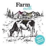 Cow Farm Landscape Poster. Black sketch cow farm landscape poster with cow grazing in a meadow next to mountains vector illustration Royalty Free Stock Images