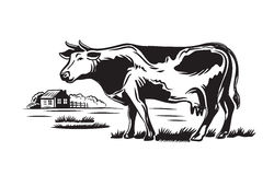 Cow and farm. Vector black cow and farm on white background Royalty Free Stock Photo