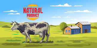 Cow and farm. Vector color cow and farm on white background Royalty Free Stock Images
