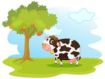 Cow in a field. Illustration of cow in a field Stock Image
