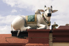 Cow figure Royalty Free Stock Photo