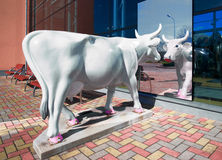 Cow Figure in Ventspils in Latvia Royalty Free Stock Photo