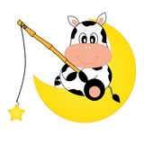 Cow-fishing star Royalty Free Stock Images