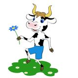Cow with a flower Royalty Free Stock Photography