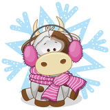 Cow in a fur headphones. On the background of snowflake vector illustration