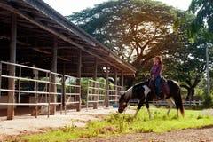 Cow-girl assez asiatique de femme montant un cheval dehors dans une ferme Image stock