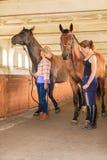 Cow-girl et jockey marchant avec des chevaux dans l'écurie Images libres de droits