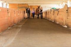 Cow-girl et jockey marchant avec des chevaux dans l'écurie Photos libres de droits