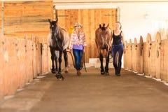 Cow-girl et jockey marchant avec des chevaux dans l'écurie Image libre de droits