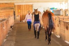 Cow-girl et jockey marchant avec des chevaux dans l'écurie Photographie stock