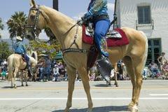 Cow-girl sur le cheval pendant le défilé vers le bas State Street, Santa Barbara, CA, vieille fiesta espagnole de jours, 3-7 août Photographie stock libre de droits