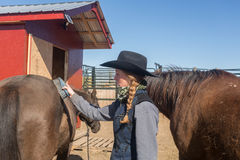 Cow-girl toilettant un cheval Image stock