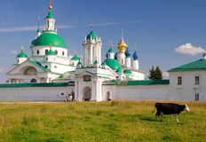 Cow goes past the monastery in Rostov Stock Images