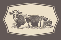 Cow in graphical style in the frame. Stock Images