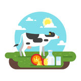 Cow graze in a field and dairy products. Vector flat style illustration of cow graze in a field and dairy products. Good sunny day. Nature background stock illustration