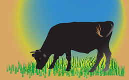 Cow on green field. Illustration Royalty Free Stock Image