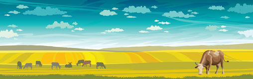 Cow and green meadow. Rural landscape. Stock Photo