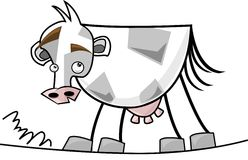 Cow_grey_white Stock Images