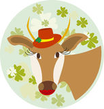 The cow hat on the background of leaf clover Stock Photo