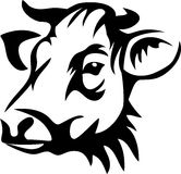 Cow. Head of horned cow - black and white illustration Stock Photography