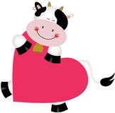 Cow on heart shaped Stock Images