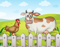 A cow, a hen and a beautiful landscape Royalty Free Stock Photo