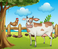 A cow, a hen and a beautiful landscape Stock Photography