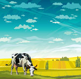 Cow, herd and field. Herd of cows in green field on a blue sky. Vector rural nature landscape Stock Images