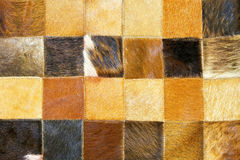 Cow hide. Close up shot of brown cow hide texture Royalty Free Stock Images