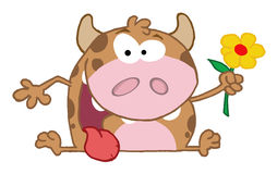 Cow holding a flower Stock Image