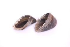 Cow hooves - dog treats Stock Image
