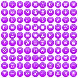 100 cow icons set purple. 100 cow icons set in purple circle isolated vector illustration Stock Image