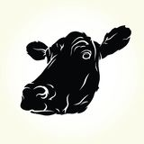 Cow illustration Stock Images