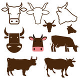 Cow labels Royalty Free Stock Image