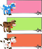 Cow labels Royalty Free Stock Photography